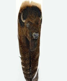 Hand Painted BISON on Feather! Amazing ! <3