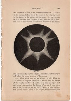 1884 eclipse shapes print original antique zodiac astronomy lithograph von antiqueprintstore auf Etsy https://www.etsy.com/de/listing/224853183/1884-eclipse-shapes-print-original