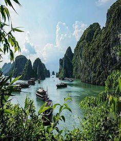 Halong Bay, Vietnam Wanderlust :: Travel the World :: Seek Adventure :: Free your Wild :: Photography & Inspiration :: Beach + Island + Mountain Destinations