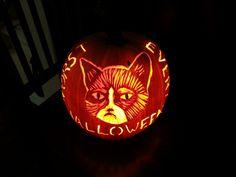 Grumpy Cat - 2014 - Lit. - Halloween Pumpkin - Jack-o-lantern