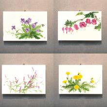 예쁜 그림 들꽃 4종 C 셋트 Plate Design, Canvases, Textile Art, Art Ideas, Flora, Textiles, Watercolor, Embroidery, Frame