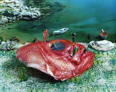 宇都 由美子(Yumiko Utsu,b.1978) 由美子曾说,这些是她想象中诺亚方舟离开后的生活在复杂混乱世界中的生物与场景。图片中,头上长着肠子般的婴儿,鱿鱼妇人以及被塞入了章鱼眼的猫,它们大多是由美子用各种各样的水果蔬菜与海鲜搭建成的。表面富有幽默趣味,但同时又让人不寒而栗。她说自己最喜欢的艺术家是捷克动画大师史云梅耶(Jan Švankmajer),从这点上来看,她与史云梅耶那部Food倒是有异曲同工之妙,既诱人又令人不安。