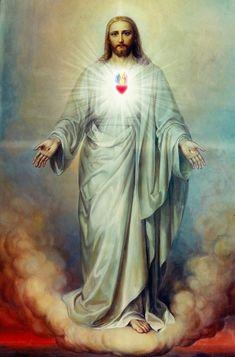 Jesus Our Savior, Heart Of Jesus, Jesus Is Lord, Jesus Christ Painting, Jesus Art, Catholic Art, Religious Art, Jesus E Maria, Jesus Photo