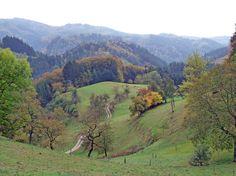 Abstieg vom Blauen: Auf der elften Etappe Richtung Kandern geht es steil hinab...