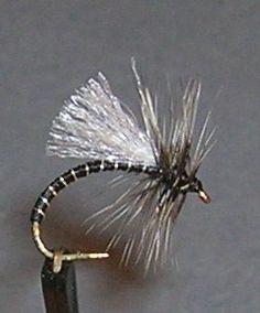 FlyTyingForum.com - Dry Chiro