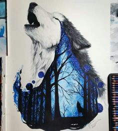 Wolf, Tear drop, Forest Beautiful!