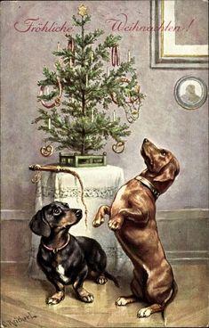 Postkarte Reichert, C., Frohe Weihnachten, Dackel, Tannenbaum - Dachshund