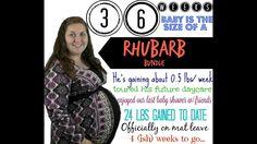 36 Week Pregnancy Update | 9 MONTHS PREGNANT! ♥