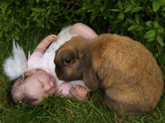 sinister Easter rabbit and baby