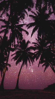 Image about palms in pink by belabiazzetto on We Heart ItYou can find Pink hearts and more on our website.Image about palms in pink by belabiazzetto on We Heart It Aesthetic Pastel Wallpaper, Pink Aesthetic, Aesthetic Wallpapers, Aesthetic Vintage, Night Aesthetic, Aesthetic Images, Aesthetic Grunge, Best Iphone Wallpapers, Pretty Wallpapers