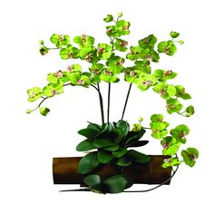 Green orchids - prettiest green flowers   I've ever seen.  NearlyNatural Phalaenopsis Stem in Green (Set of 12)