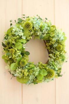 Fresh preserved green wreath 'Mist'