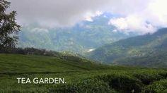 Sikkim un remanso de paz, ven a conocer un lugar interesante, lleno de mucha historia y cultura.. Visita nuestra pagina web para que conozcas mas sobre nuestros planes de viaje:http://viajesaindia.org/index.html