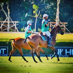 Playing polo #sotogrande #spain #cadiz #sport #travel #andalucia #summer #animals #horses #places