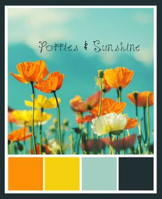 Poppies & Sunshine - A Wedding Color Story