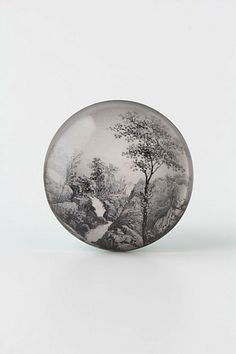 I don't even own anything that needs knobs, but I want these Scenic Vista Knob