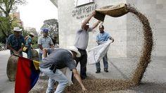 Ley en Colombia prohíbe a campesinos almacenar semillas para que Monsanto y otras corporaciones vendan las suyas
