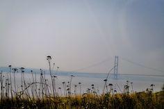 Misty Bridge.  [Spring 2015]