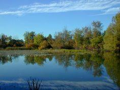 Oakwoods Metropark (Flat Rock, MI)