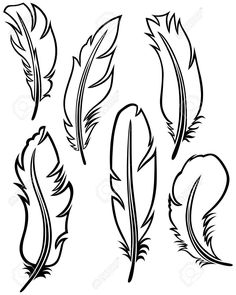 Feather set vector by kreatiw - Image - VectorStock Feather Drawing, Feather Art, Feather Design, Leather Carving, Leather Tooling, Feather Template, Feather Pattern, Leather Craft Tools, Leather Projects