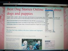 What the translate toolbar looks like with the drop down menu activated Google Homepage, Spanish Sentences, Writing Sites, Puppy Clothes, Write Online, First Language, Earn More Money, Google Translate, Creating A Blog