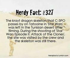 Nerdy Fact