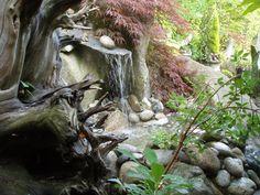 on a Bainbridge Island garden tour Bainbridge Island, Flora, Tours, Plants, Gardens, Yard, Outdoor, Spaces, Water