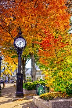 Autumn - Bar Harbor, Maine A beautiful place to relax and have a cup of tea. One of the most peaceful and gorgeous places I've been in the U. S.