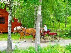 Skansen, Stockholm, Sweden   ....visited Skansen many years ago......