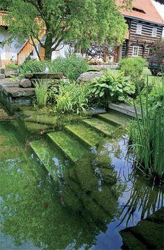 garden pond I keri tó Natural Swimming Ponds, Swimming Pools, Natural Pools, Ponds Backyard, Backyard Landscaping, Garden Ponds, Dream Pools, Cool Pools, Pool Designs