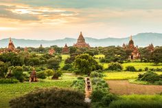 Temples in Bagan, Myanmar Bagan, Machu Picchu, Mergui Archipelago, Ngapali Beach, Taj Mahal, World Most Beautiful Place, Thailand, Temple Ruins, Travel General