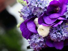 Bouquet with Purple Vanda Orchid, Purple Hyacinth and Off-White Ranunculus Hyacinth Bridal Bouquet, Purple Flower Bouquet, Orchid Bouquet Wedding, Purple Wedding Flowers, Purple Orchids, Blue Flowers, Wedding Colors, Garden Pictures, All Things Purple