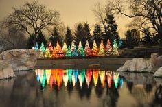 Christmas tree lights on a lake.