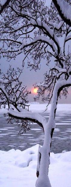 Winter Sunset, Lauttasaari, Finland photo via sheila. I really want to go to a winter wonderland Winter Szenen, Winter Sunset, Winter Love, Winter Magic, Winter Night, Winter Trees, Snowy Trees, Deep Winter, Cold Night