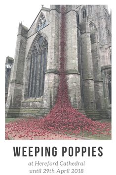 The Weeping Poppies at Hereford Cathedral will be on display till April It takes about 50 minutes to drive there from Hopton House Hereford Cathedral, Ceramic Poppies, Herefordshire, B & B, Dog Friends, Great Britain, Special Events, Countryside, United Kingdom