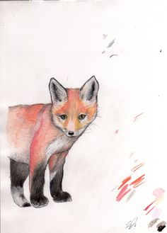 sweet original illustration of a fox cub