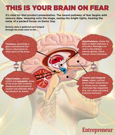 This is your brain on fear. #infographics