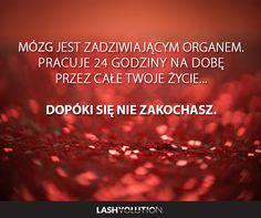 Jest w tym odrobina prawdy? :) #złote_myśli #miłość #sentencje Motto, Sentences, Humor, Motivation, Funny, Quotes, Life, Frases, Quotations