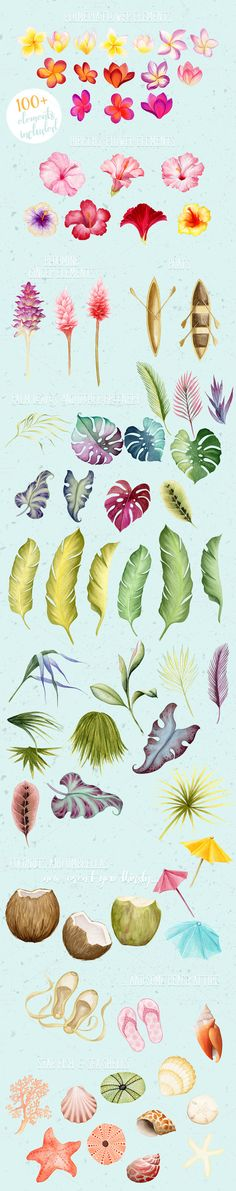 Tropical flowers and leaves , Lei and bouquets, watercolor cliparts set for designers and crafters