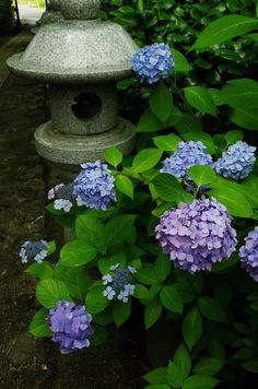 Japanese stone lantern adds interest to a corner