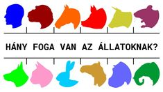 Hány foga van az állatoknak? Van, Logos, Logo, Vans, Vans Outfit