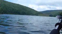 Elkhorn Lake, Virginia