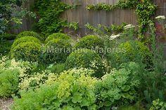 large family garden | Charlotte Rowe Blog