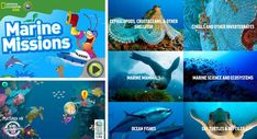 LEARN ABOUT THE OCEAN - Kids Activities