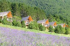 Huttopia Dieulefit - Camping nature en Drôme Provençal