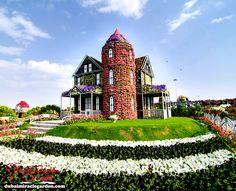 Dubai Miracle Garden: The World's Biggest Natural Flower Garden With Over 45 Million Flowers - Modern Million Flowers, Dubai Garden, Miracle Garden, Above Ground Pool Decks, Visit Dubai, Big Naturals, Palm Beach Gardens, Garden Soil, Deck Design