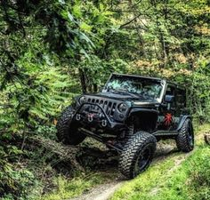 Jeep in the woods.