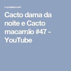 Cacto dama da noite e Cacto macarrão #47 - YouTube