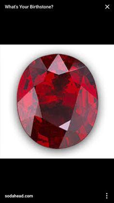 Concha nacar perlas abalorios perlas círculo 11,5 mm madreperla 40 cm Strang 6 colores