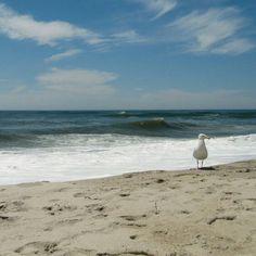 Nice view of sea and beach